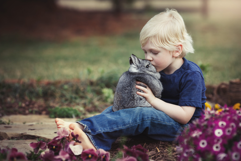 image of young cute boy kissing a rabbit Raleigh Children's Photographer