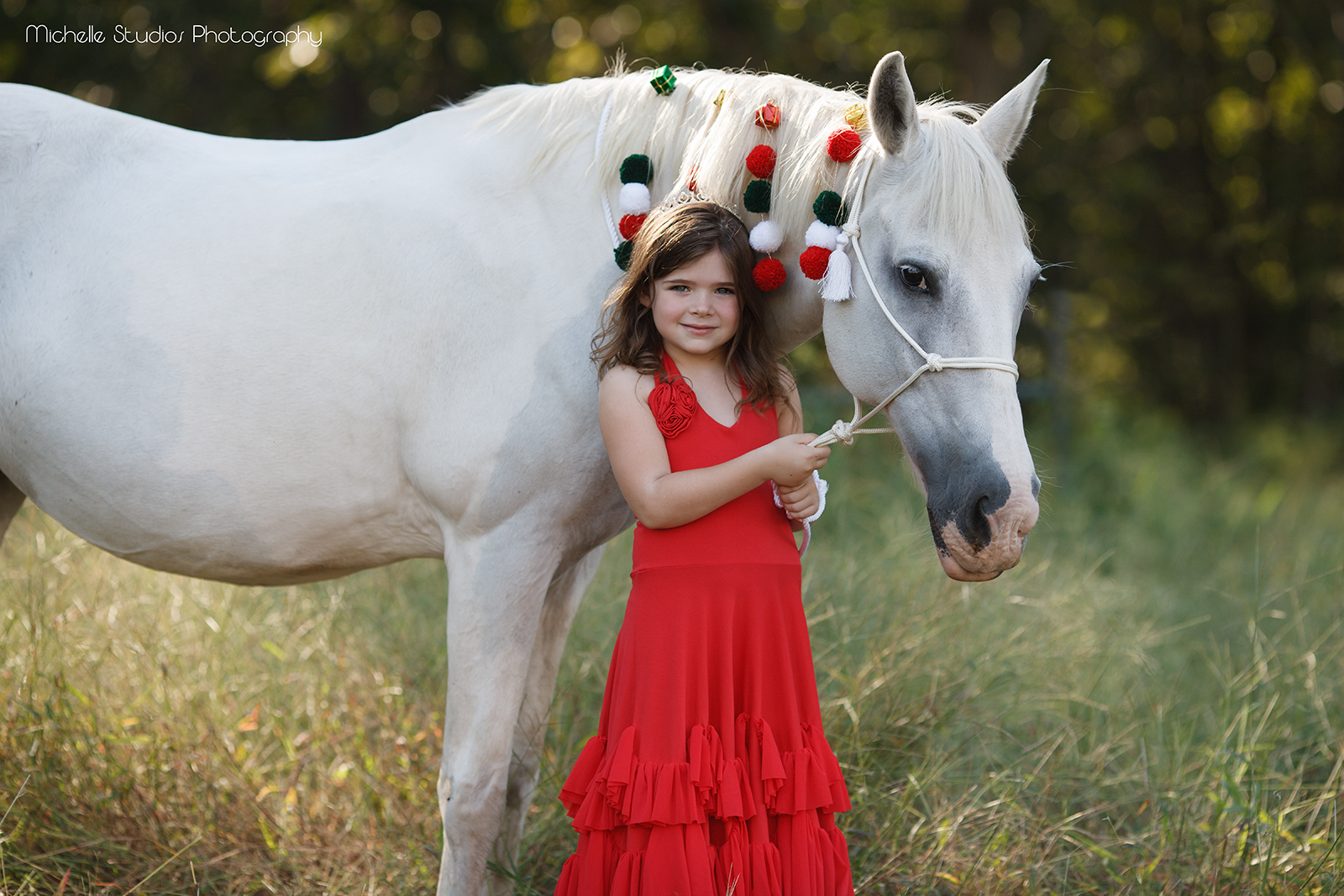 Christmas photography special in Raleigh