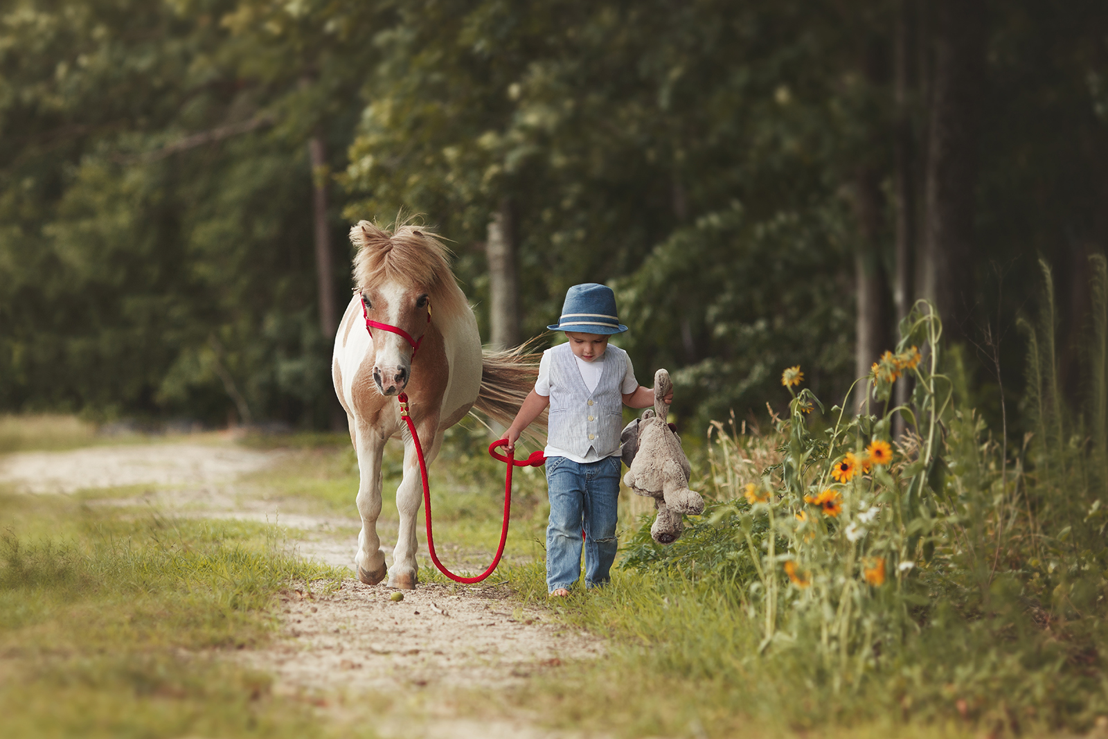 Raleigh child photography with animals