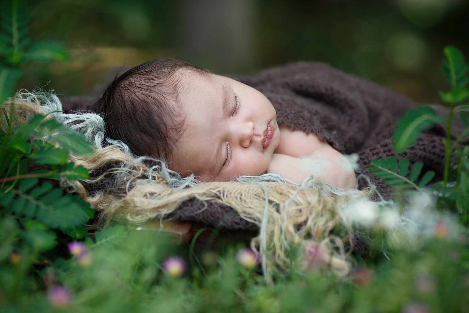 newborn photographer in Raleigh outdoor photos