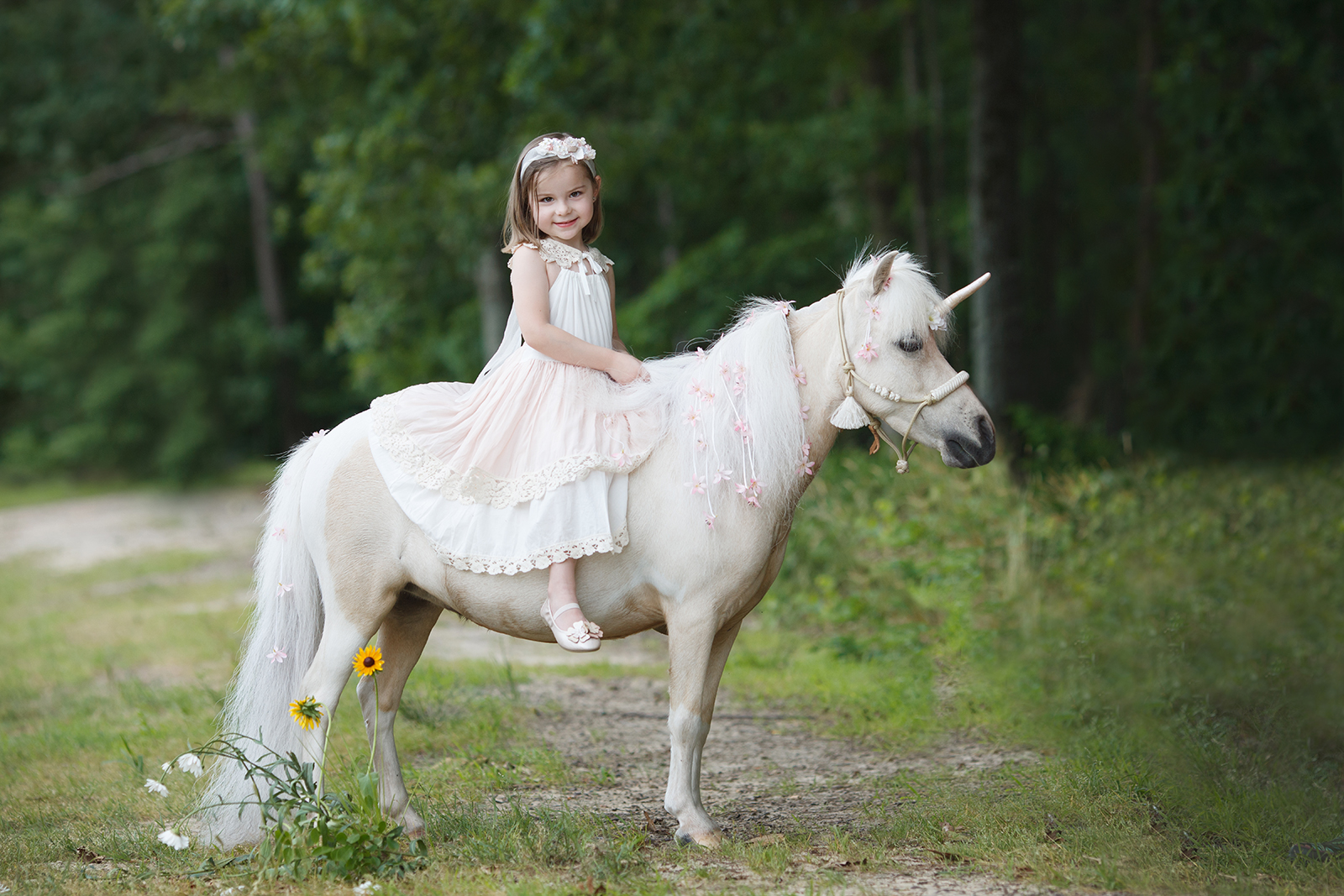 unicorn photography in Raleigh