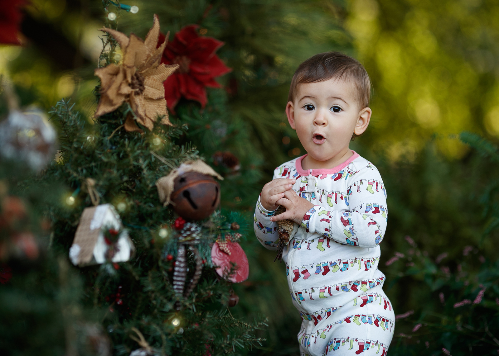 Christmas Mini Sessions.Christmas Portraits At Michelle Studios Michelle Studios